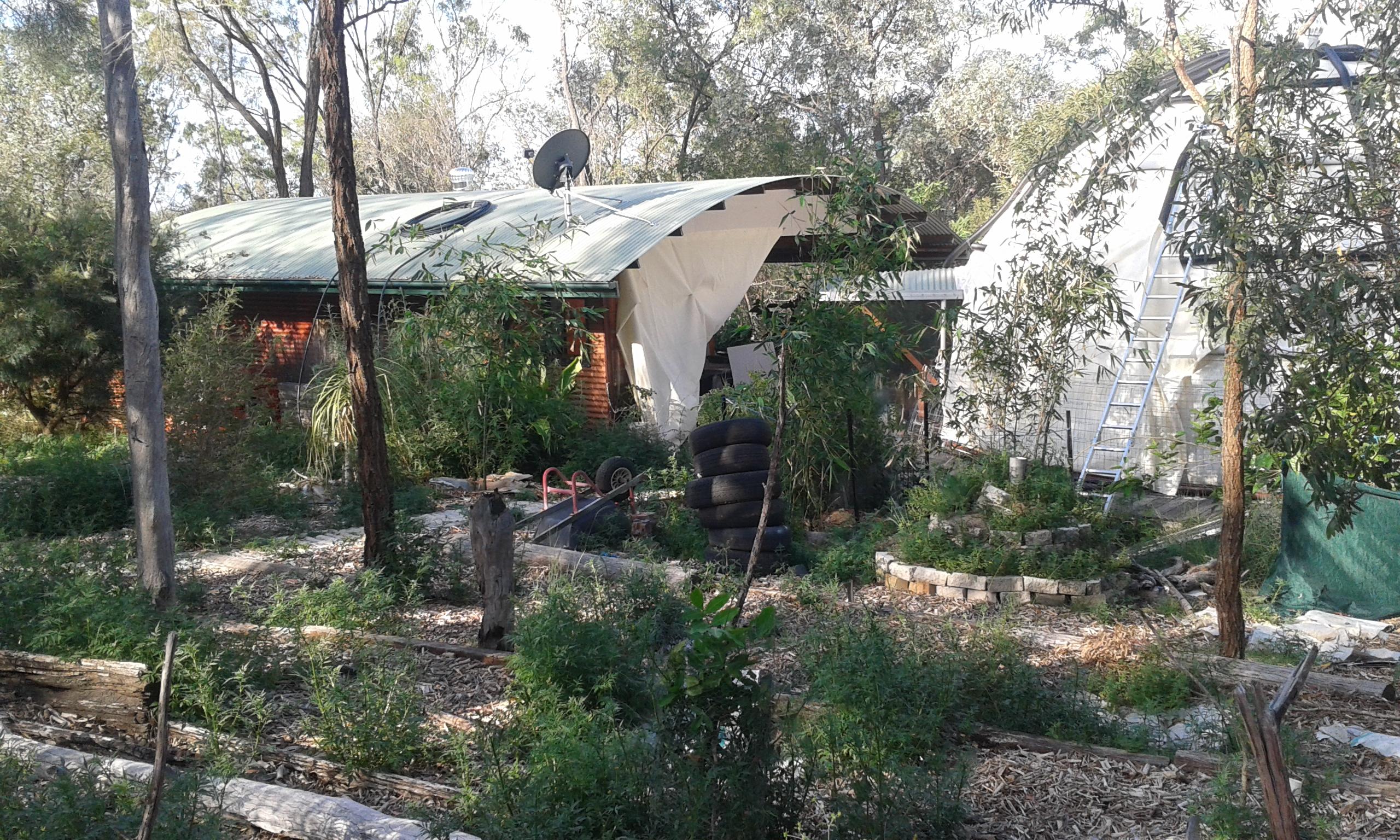 Cabane, terrasse, dome et forêt nourricière (Wilkesdale, Australie)